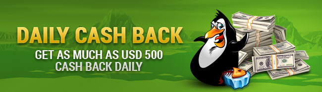 Cash Back Reward